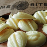White Chocolate Trilobite Buttons