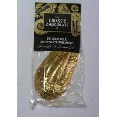 Milk Chocolate Trilobite