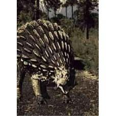 Ankylosaurus 3D Greetings Card