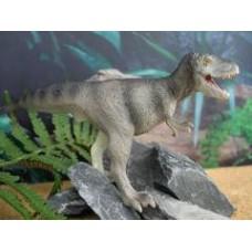Albertosaurus - Carnegie Collection