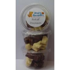 Dinosaur Chocolates Eco Pot 55g