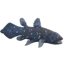 Coelacanth - Safari Collection