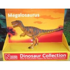 Megalosaurus - NHM