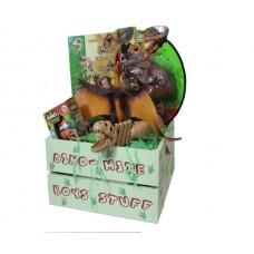 Dinosaur Gift Crate